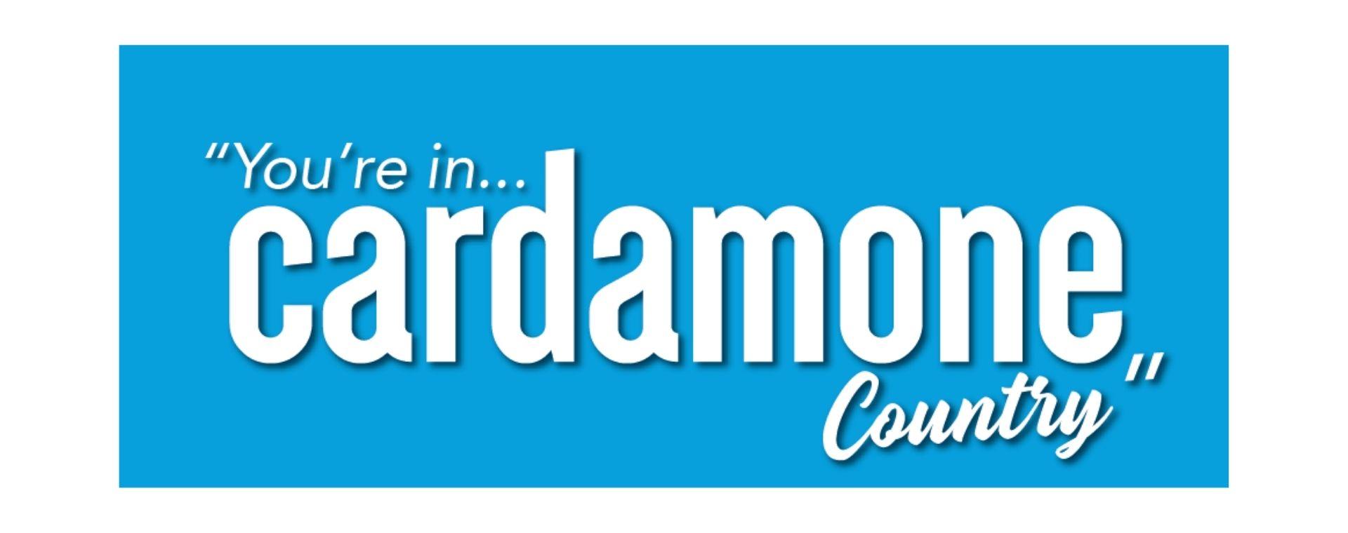 Major Sponsor Cardamone Real Estate
